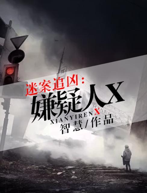 迷案追凶:嫌疑人X
